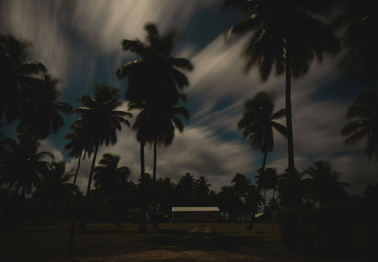Moon Nights Cook Islands Atiu Entrance Moon MoonNights Mystic Night Photography Night Walks Aitutaki Cook Islands Dark Beauty Darkness And Light Fullmoon Garden Haunting  Island Longtimeexposure Moonlight Movement Mysterious Mystical Nightscape Nightsky Palm Trees Rarotonga Stars