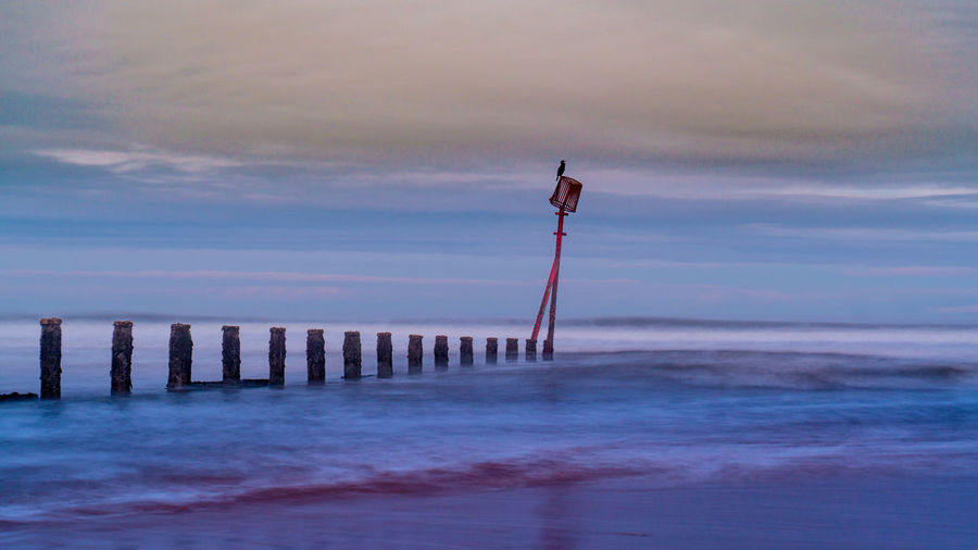 Bird perching on wooden post at beach against sky during sunset