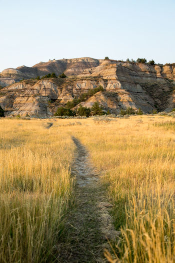 Beauty In Nature Day Field Grass Landscape Mountain Mountain Range Nature No People Outdoors Plant Rural Scene Scenics Sky Theodore Roosevelt National Park Trail Tranquil Scene Tranquility