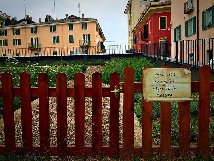 Piazza Boves, Cuneo. Streetart Urban Lifestyle Cuneo Colors Of Autumn Iphone6 Pastel