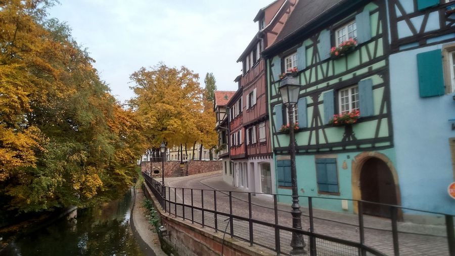 Alsace Coloured House Architecture Green Building Exterior Trees Colors Of Autumn Tranquil Scene No People France Adapted To The City Colour Your Horizn Adventures In The City