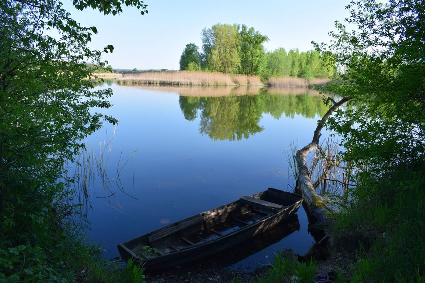 Water Reflection Lake Tree Plant Tranquility Nature Sky No People Tranquil Scene Nautical Vessel Beauty In Nature Scenics - Nature Day Non-urban Scene Transportation Abandoned Mode Of Transportation Outdoors Deterioration My Best Travel Photo My Best Travel Photo