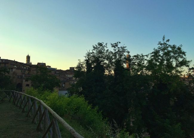 43 Golden Moments Italy Siena Tuscany Toscana Sunset Sunset_collection Sunset Silhouettes Silhouette Urban Landscape Landscape_Collection Summertime Panorama IPhoneography Sky Landscape Sun On The Way Streetphotography Streetphoto_color Light And Shadow Street Photography
