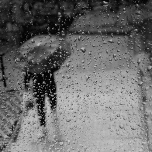 Rain Umbrella Blackandwhite Blackandwhite Photography The Umbrella Man Black And White Rainy Days Photography Rainy