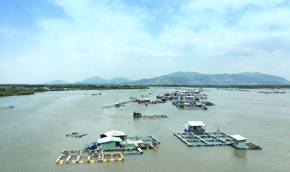 Vietnam Vungtau Vietnam Seafood TriShot TriShot Photography On The River Mekong River MekongDelta