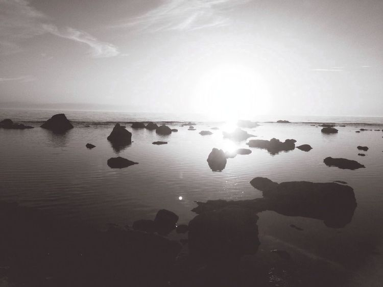 The Moment - 2014 EyeEm Awards The Environmentalist – 2014 EyeEm Awards Sunset Blackandwhite Sweden Monochrome Silhouette Sunset Silhouettes Nature Ocean