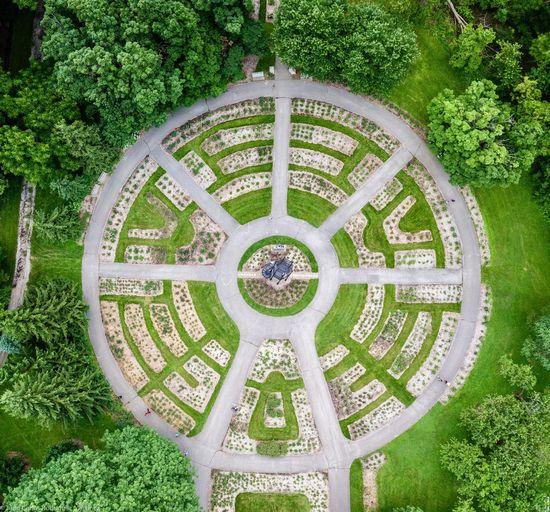 Geometric Celtic Knot Garden Maze Maze Symmetrical Architecture Symmetryporn Symmetrical Pattern Plant Geometric Shape Green Color Shape Design No People Circle Architecture Day Tree Directly Below Creativity Symmetry