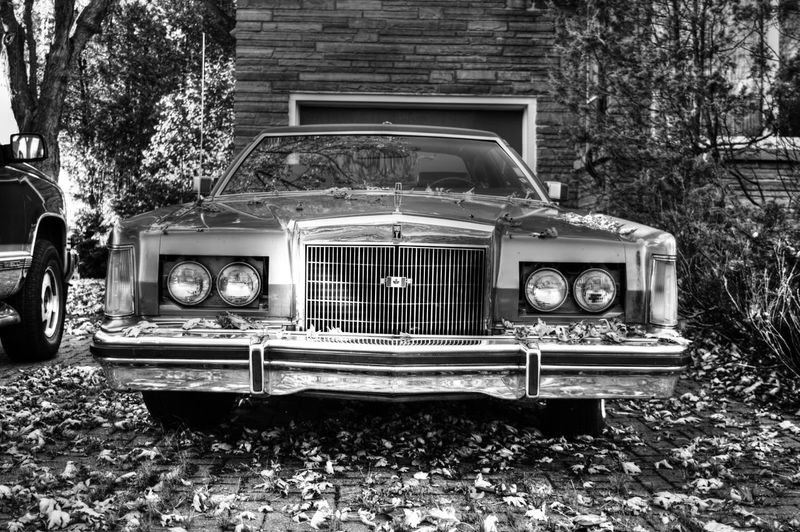 Mode Of Transportation Car Land Vehicle Motor Vehicle Transportation Retro Styled Old Plant Abandoned Tree Day Obsolete Architecture Nature Vintage Car Built Structure No People Building Exterior Field Deterioration