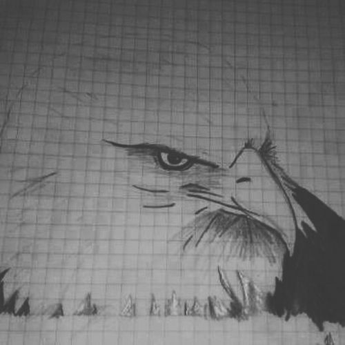 Black And White Portrait Blackeagle Nobleness Pencil Drawing#Beşiktaş!