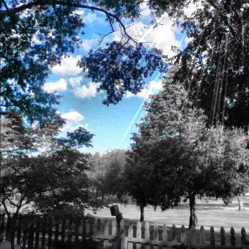 Blue Monday 25likes Dynamiclight Clouds Ipone Sky Decolorizer Landscape Tree Blue Monday Cloudporn Texas Photooftheday Instamood Bestoftheday 30likes 20likes Jj_forum