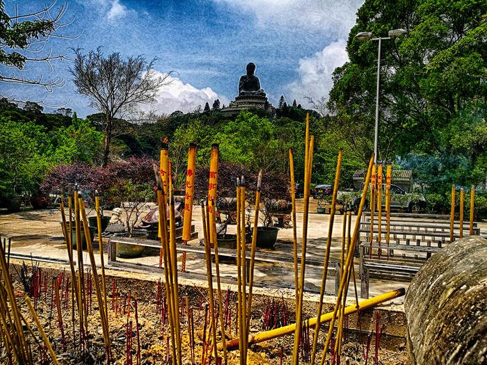 Buddhastatue Buddhism Holiday NgongPing Polinmonastery Religion Sittingbuddha Tiantanbuddha Worldsbiggestsitting
