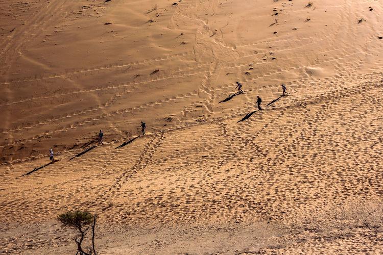 Land Sand Day