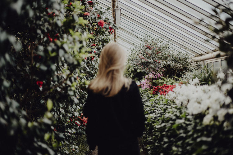 Rear view of woman walking in greenhouse amidst plants