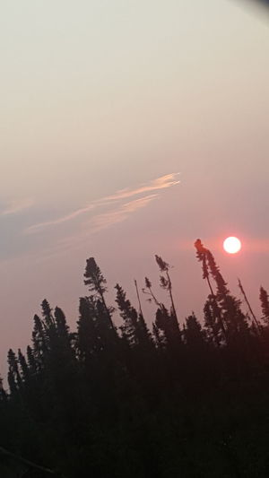 Sunset Beauty In Nature Dramatic Sky Tranquility Alaska Is Where I'm At Myhomealaska Viewfrommybackyard Redsun Redsunset No Filter, No Edit, Just Photography