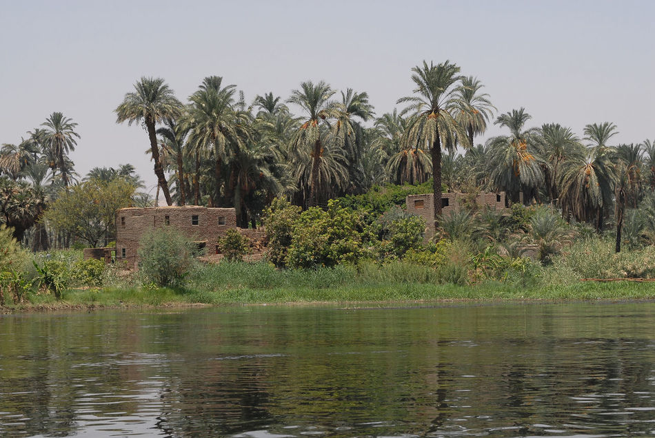 Beauty In Nature Buildings Day Dwellings Lake Landscape Nature No People Outdoors Palm Tree River Nile Sky Tranquility Tree Unfinished Water