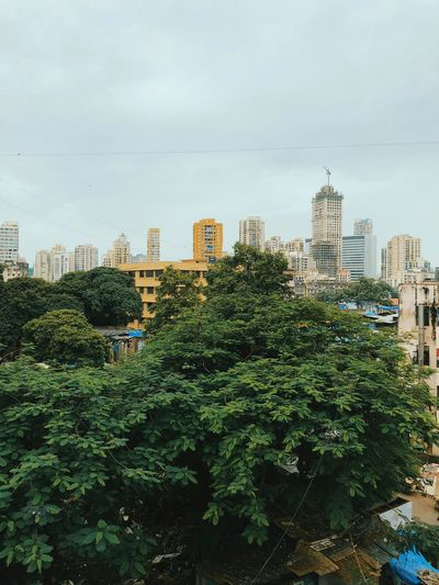 RESIDENSITY #mumbai City Cityscape Tree Urban Skyline Skyscraper Modern Downtown District City Life Sky Architecture Office Building Residential District Tall - High Infrastructure