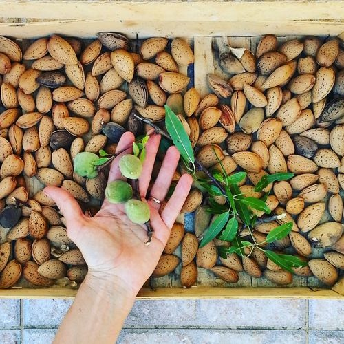 High angle view of hand holding almond nuts above wood crate