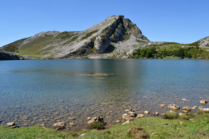 View of Lake Enol at Lakes of Covadonga in Asturias, Spain Asturias Countryside Covadonga Enol Lake Field Hill Lago Enol Lagos De Covadonga Lake Landscape Mountain Mountain Range Nature Outdoors Peak Picos De Europa Picturesque Rural Scenics Sightseeing SPAIN Tourism Touristic Travel Water