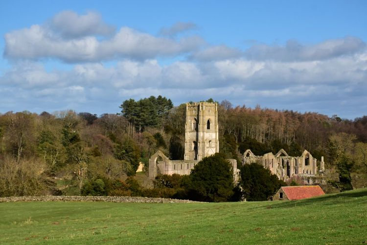 Fountains abbey, yorkshire, was founded in 1132 and is one of the best preserved ruins of it's kind.