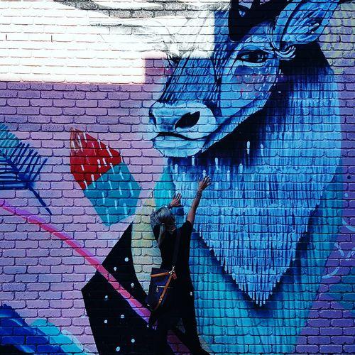 Graffiti &