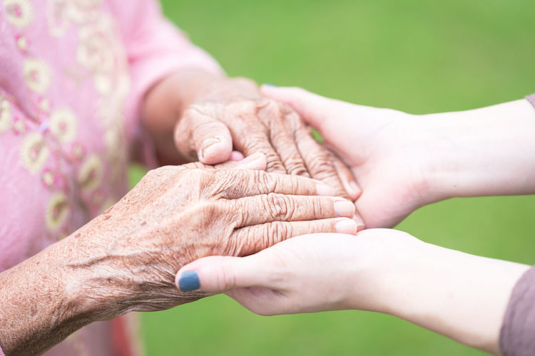 Close up image of young woman holding wrinkled hands of senior elderly woman with care Hands Senior Hand Young Care Old Holding Close Elderly Up Hold Help SUPPORT People Grandmother Aged Parkinson Adult Woman Love Nurse Caregiver Two Disease Togetherness Assistance Family Patient Age Wrinkled Retired Skin Charity Mature Granddaughter Elder Close-up Helping Aging Health Female Closeup Hope Pray