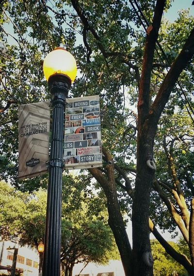 street lamp Downtown District Lamppost City Tree Road Sign Communication Guidance Text Sky Close-up Architecture Information Signboard Information Sign
