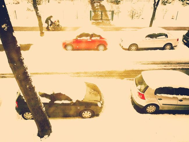 Winter Snow Cars