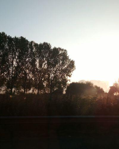 Sunrise River Fog Trees Silhouette
