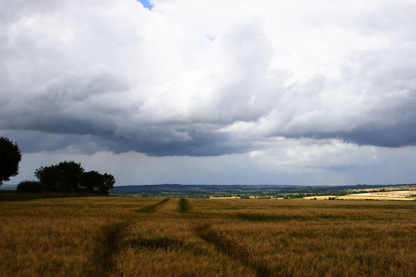 Storm Coming - Clouds over Fields 06 Agricultural Land Beauty In Nature Cloud Cloudy Dramatic Sky Farmland Field Landscape Landscape_Collection Nature Nature No People Non Urban Scene Oxfordshire UK Rural Scene Scenics Sky Sky And Clouds The Cotswolds Weather