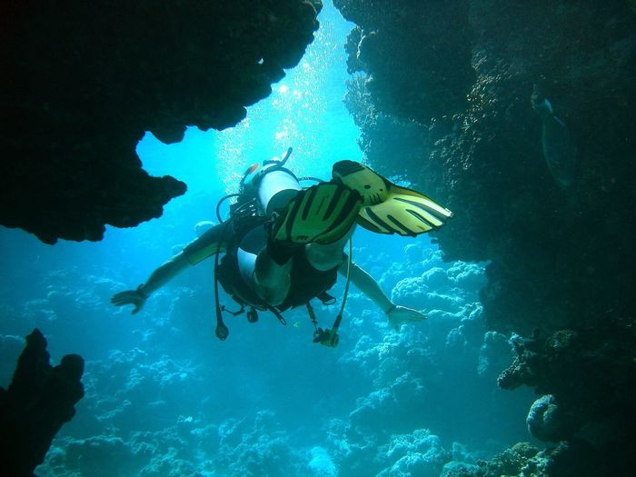Full Length Of Person Scuba Diving In Red Sea