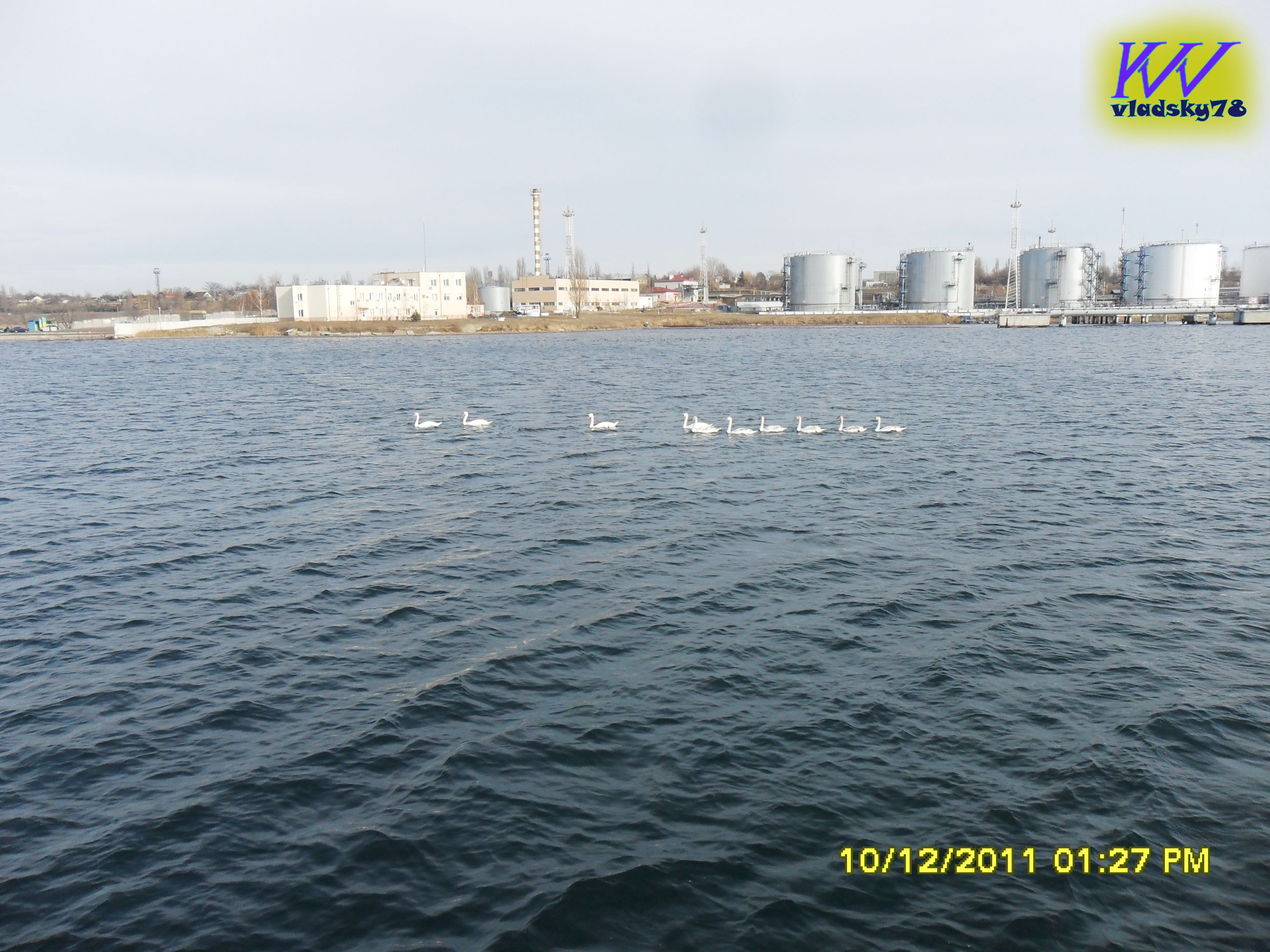 water, text, architecture, sea, communication, built structure, building exterior, outdoors, city, day, no people, nature, sky