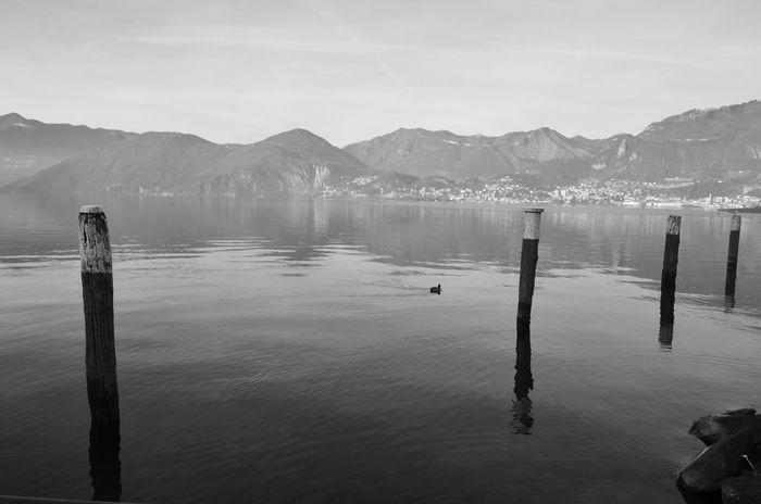 Black And White Iseo Lake Italia Italy La Lago D'Iseo Landscape Lombardia Pisogne Sunrise Tramonto Tranquility