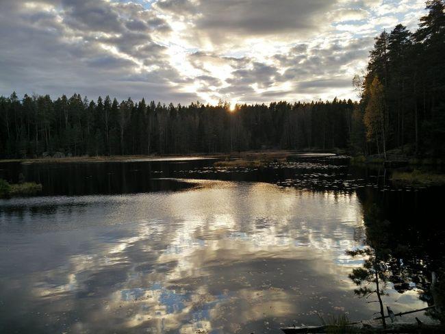 National Park Lake Sunset Calm Nature Finland