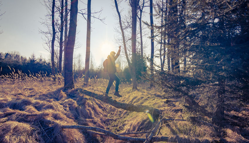 OMG the Lensflare 😂// Wonderlust Adventure Adventure Time Nature Protecting Where We Play Nature_collection Nature And People Eye4photography  EyeEm Nature Lover EyeEm Best Edits EyeEm Best Shots The Decisive Moment Lens Flare Against The Light Forest