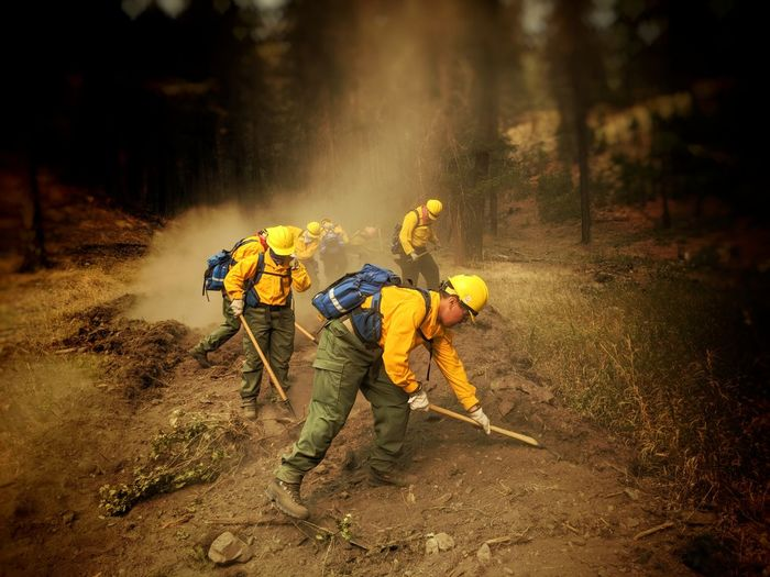 Rescue Worker Digging In Forest