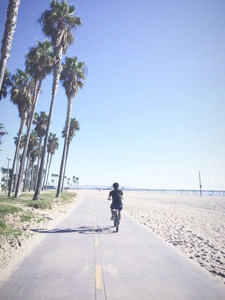 Santa Monica State Beach to Venice Beach 2016 October La Janes&Osson Santa Monica