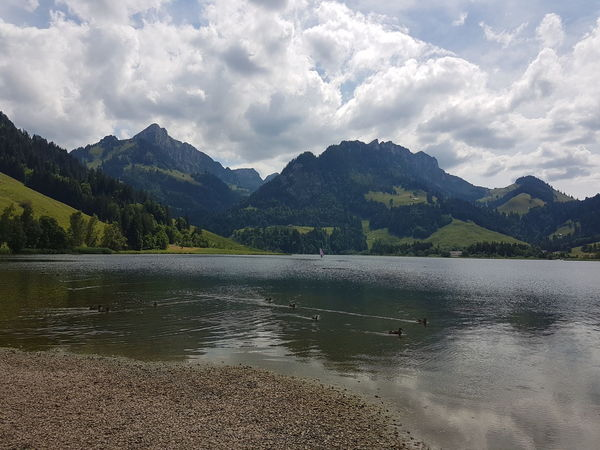 EyeEm Selects Mountain Mountain Range Cloud - Sky No People Lake Landscape Tranquility Beauty In Nature Water Outdoors Myswitzerland Leisure Activity Mountain View Swiss Mountains