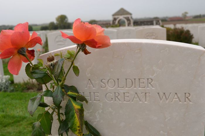 Tyne Cot Cemetery Text Western Script Flower Communication No People Nature Day Growth Freshness Petal Outdoors Beauty In Nature Plant Fragility Close-up Flower Head Cemetery