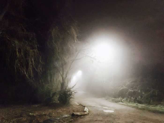 To the tennis courts Darkness And Light Flora Iphonese Lightbeams Lofi Mist Mystery Night No People Tree