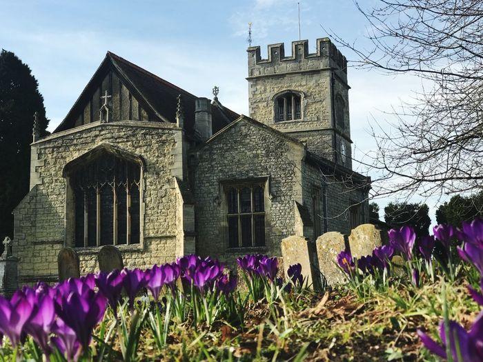 Crocus Church