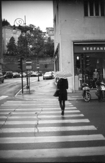 Analogue Photography Film Rain Trieste Film Photography Girl One Person Street Umbrella Zebra Crossing EyeEmNewHere The Week On EyeEm