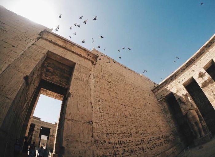 Luxor Temple Egypt Luxor_temple