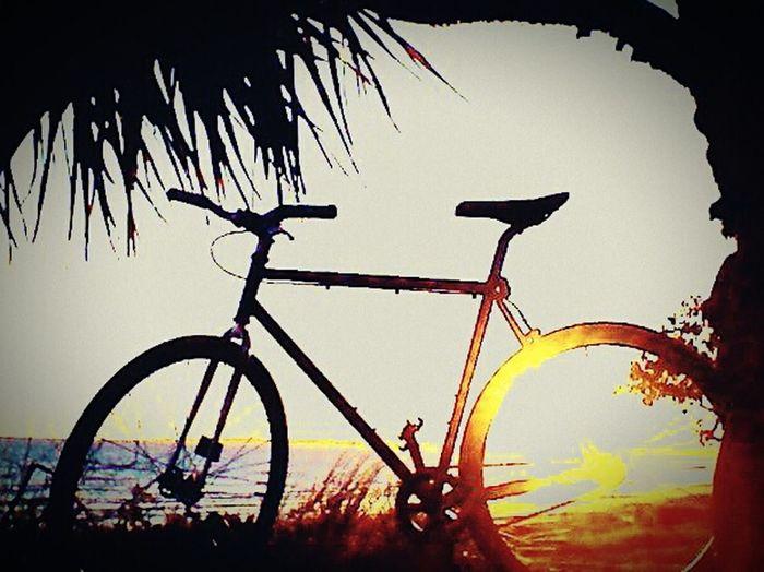Bike Fixie