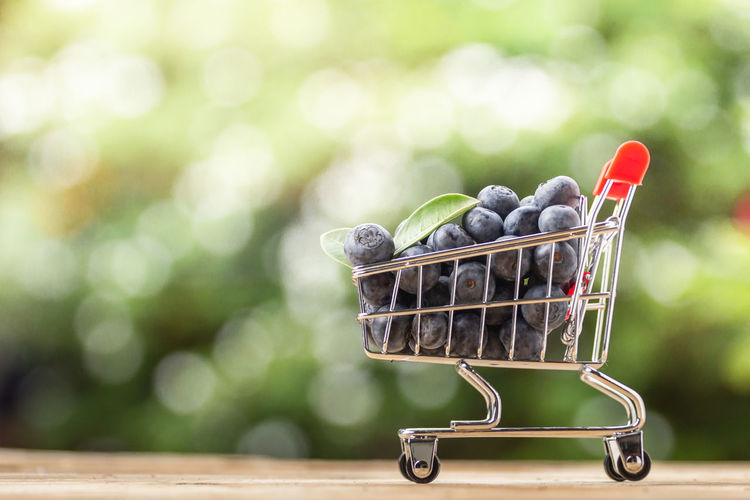 Fresh Organic Blueberries Abundance Berry Fruit Blueberry Close-up Consumerism Container Day Dieting Focus On Foreground Food Food And Drink Freshness Fruit Green Color Healthy Eating Nature No People Organic Outdoors Shopping Cart Wellbeing Wood - Material