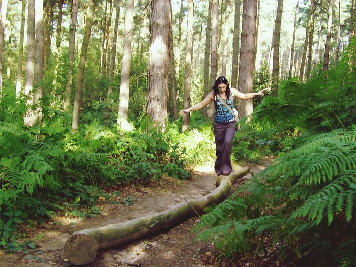 Front View Of Woman Balancing On Log In Forest