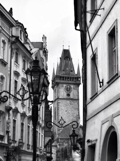Czech Republic Flippa K Asks: What Inspires You?