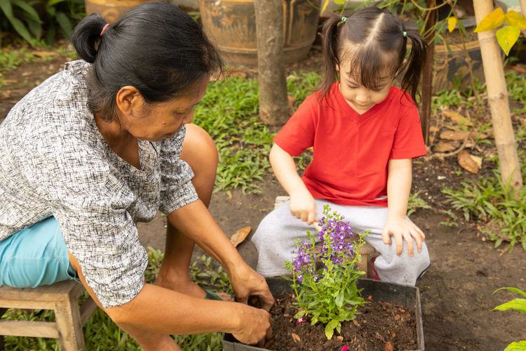 High angle view of grandmother with granddaughter planting in yard