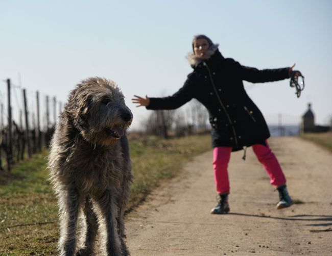 Irish Wolfhound Gentle Giant Willi The Wolfhound My Love Dogs Of EyeEm Dogslife Happy Bonding Curiosity Vineyard Peekaboo Nature Smiling Face Sunlight Animal Animal Themes People Outdoors Warm Clothing Domestic Animals Happiness Standing Smiling Friendship