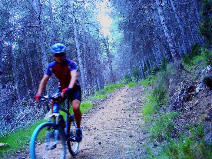 Mountain Biking BTT