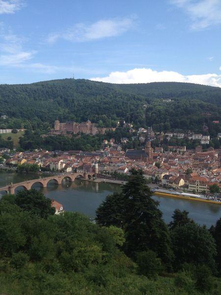 Aerial View Composition Fairytales & Dreams Heidelberg Heidelberger Schloss Human Settlement Mountain View River Schloss Heidelberg Stone Bridge Top Perspective Water